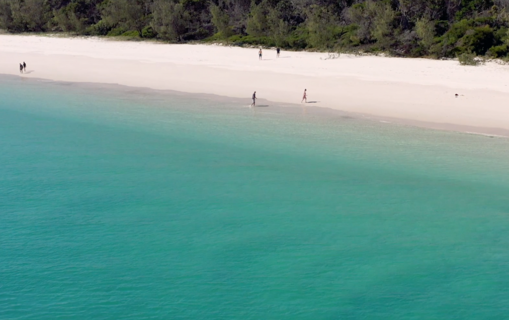 Whalesong Cruises Fraser Island Beach + BBQ West Coast secluded beach