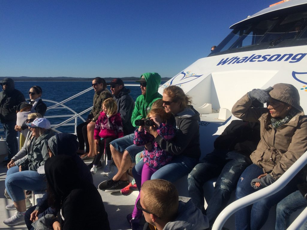 Whalesong Cruises Hervey Bay best value humpback whale watching family and child friendly