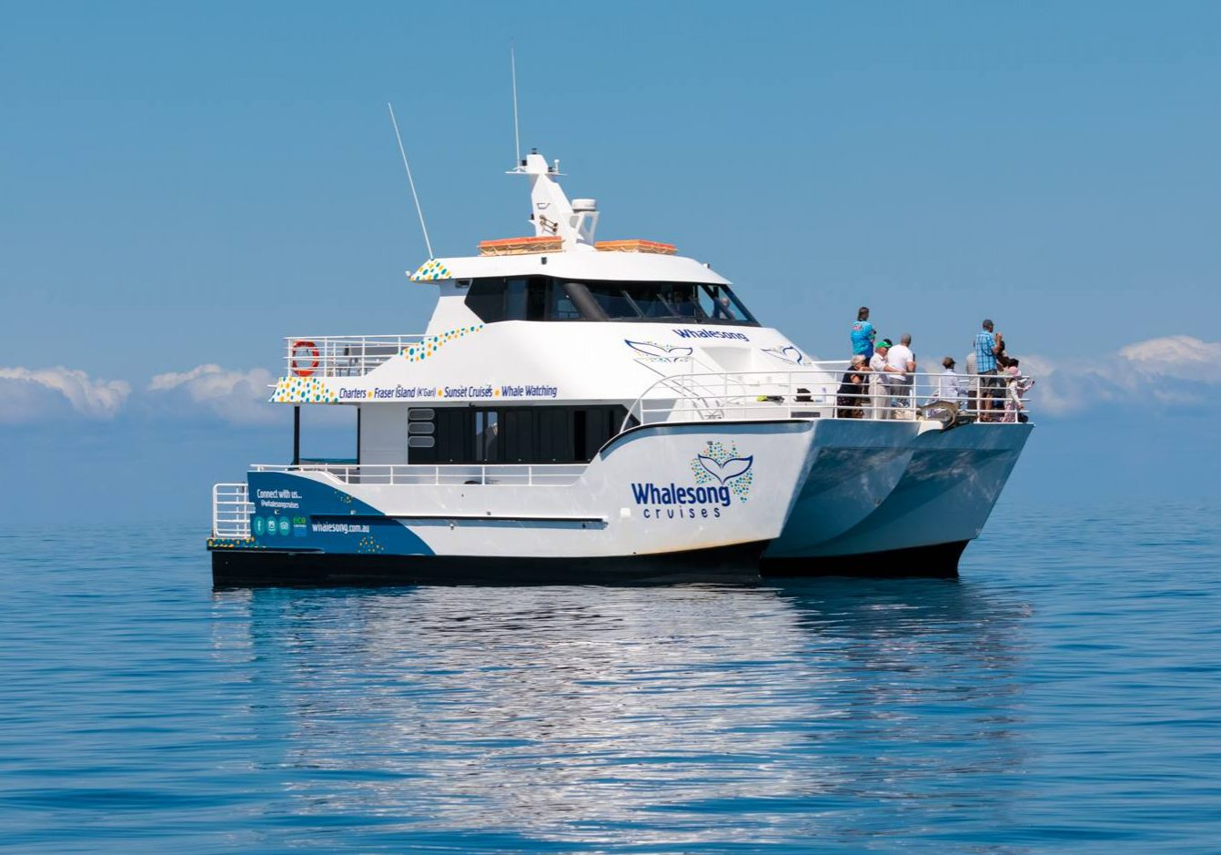 Whalesong Cruises Hervey Bay luxury half day tour operator